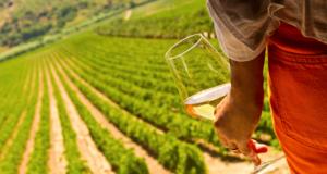 Valle dell'Acate e un bicchiere di vino bianco