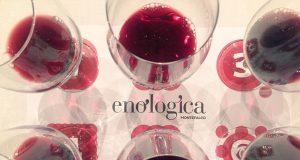 enologica-montefalco w