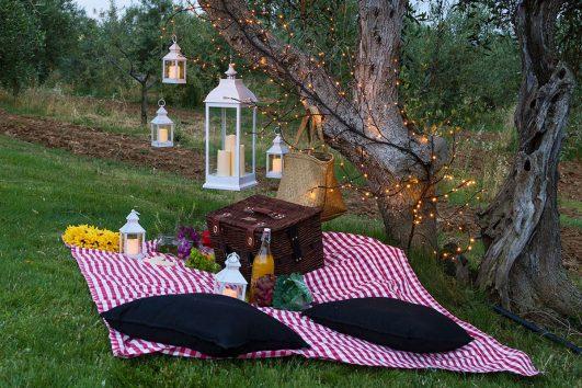 picnic in Fattoria