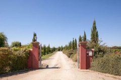Resort-Il-Casale-Bolghereseentrata