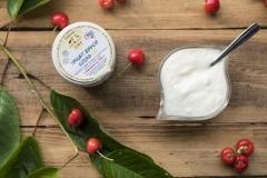 yogurt bio w