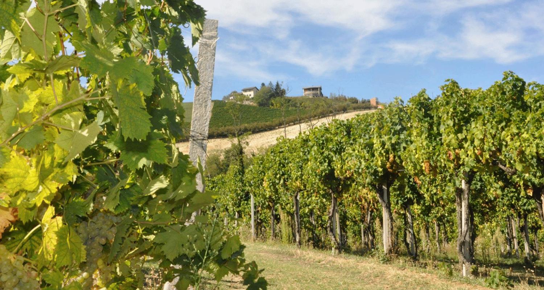 Mongioia-a-Santo-Stefano-Belbo-e-il-Moscato-d'Asti